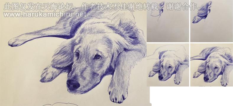 圆珠笔画技法 兴趣交流图片